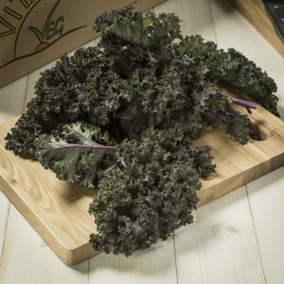 Picture of Kale - curly red (homegrown)