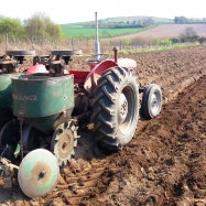 Vital Veg, organic farm, tractor and potato planter